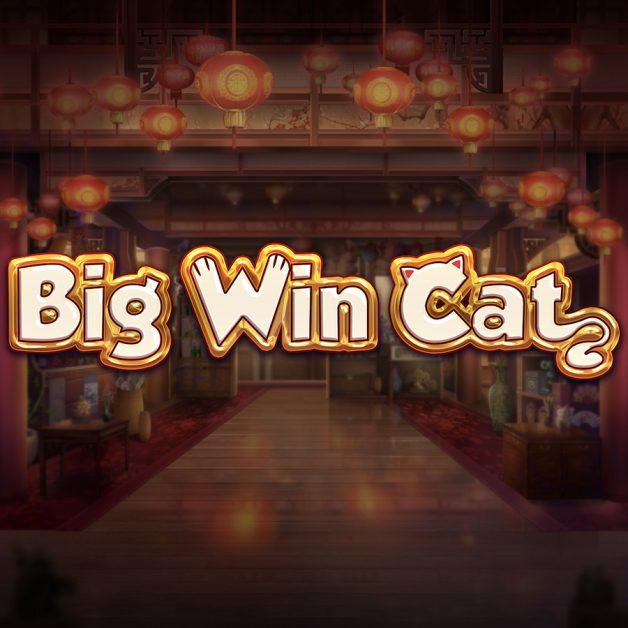 Big Win Cat – Slot Review